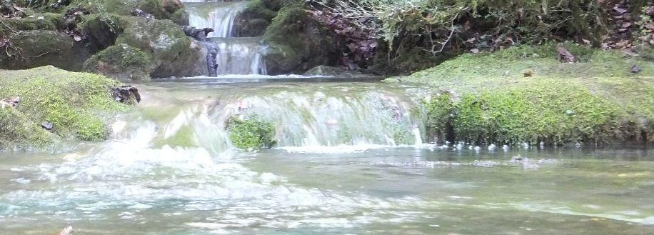 Sources pétrifiantes (tufs) à Roquefort-les-cascades
