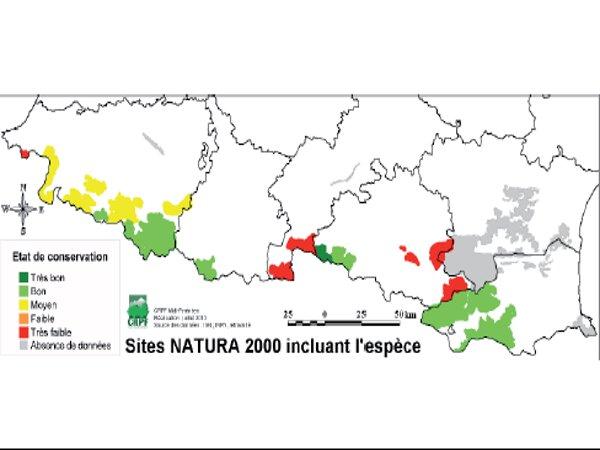 Répartition du gypaète barbu sur les sites Natura 2000 des Pyrénées