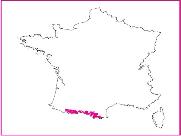 Répartition des landes acidiphiles montagnardes thermophiles des Pyrénées