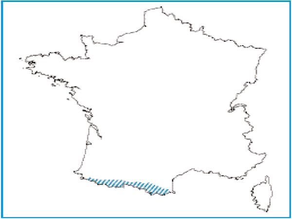 Répartition des mégaphorbiaies pyrénéennes en France