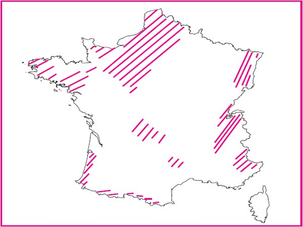 Répartition des pelouses à Nard raide en France