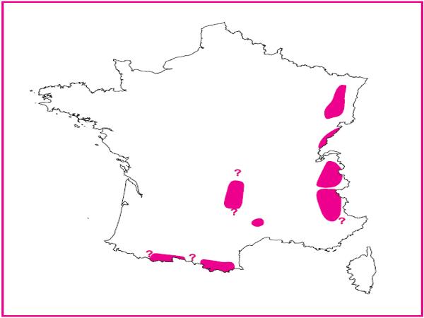 Répartition des prairies de fauche de montagne en France