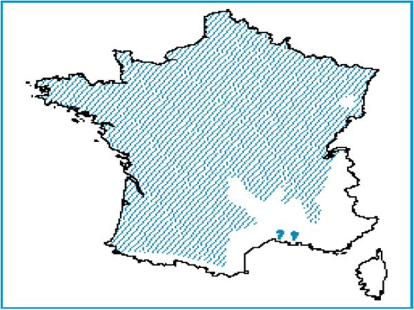Répartition des rivières avec végétation du Bidention p.p.