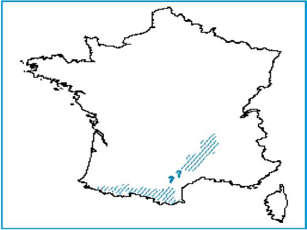 Répartition des saulaies riveraines des cours d'eau des Pyrénées