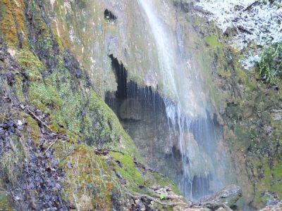 Exemple de tufs calcaires (Roquefort-les-cascades)