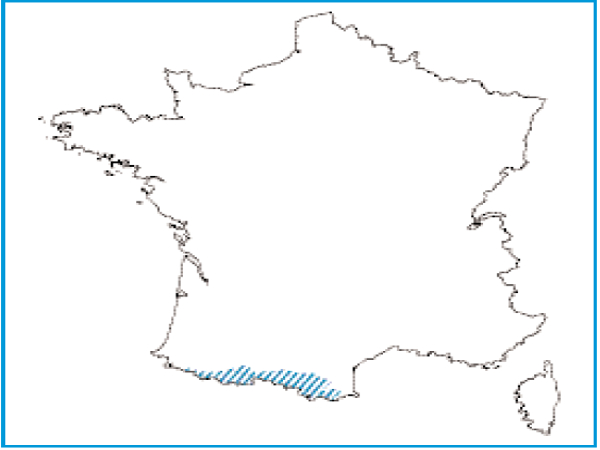Répartition de la végétation ripicole herbacée des Pyrénées