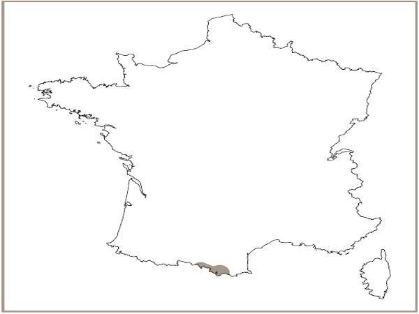 Répartition des éboulis à Séneçon
