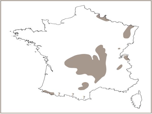 Répartition des eboulis siliceux