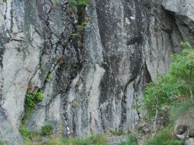 Falaise siliceuse montagnarde pyrénéenne