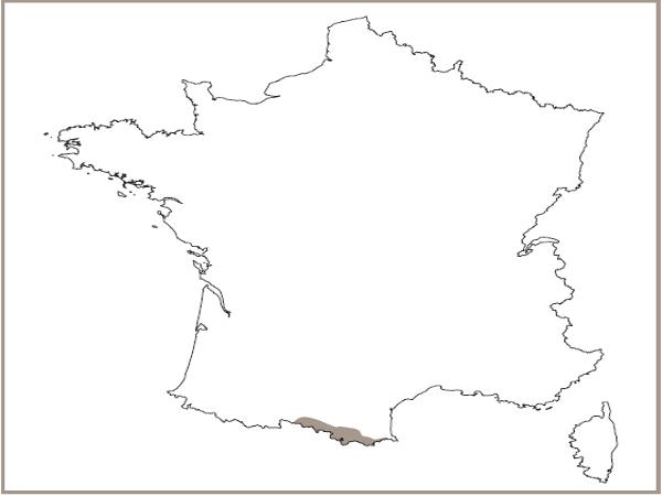 Répartition des falaises siliceuses montagnardes prénéennes