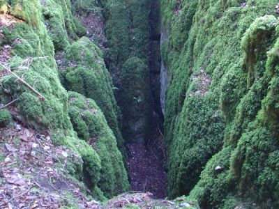 Grotte à chauves-souris